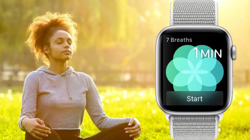 Apple Watch S4 GPS 44mm silver (MU6C2VN/A) - tập luyện
