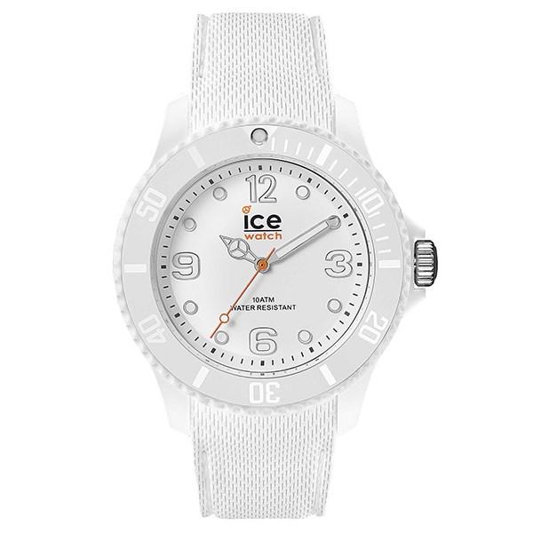 ICE 013617 - Nam