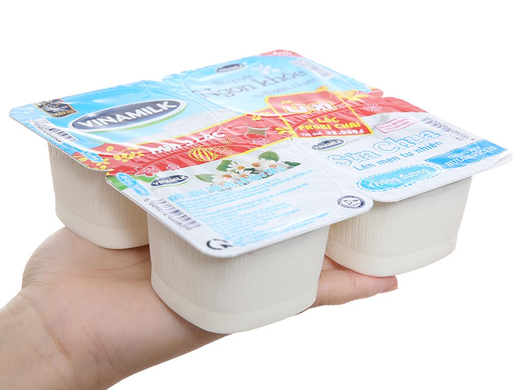 Lốc 4 hộp sữa chua không đường Vinamilk 100g 3