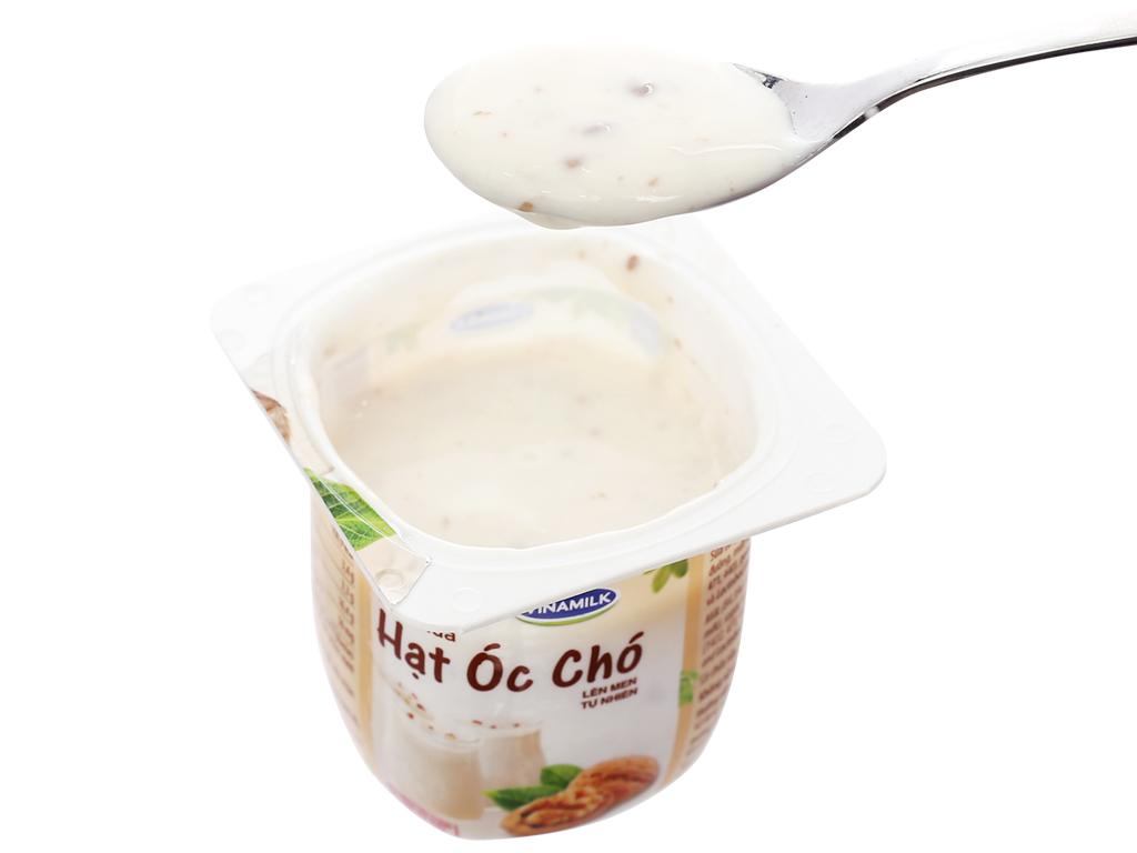 Lốc 4 hộp sữa chua hạt óc chó Vinamilk 100g 5