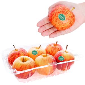 Táo Gala New Zealand nhập khẩu hộp 1kg (6 - 7 trái)