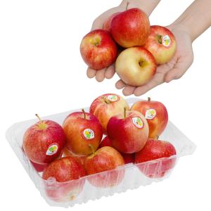 Táo Gala mini nhập khẩu Pháp hộp 1kg (10 - 12 trái)