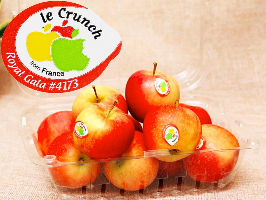 Táo Gala mini nhập khẩu Pháp hộp 1kg (10 - 12 trái) 6