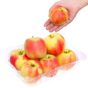 Táo Pink Lady nhập khẩu Nam Phi hộp 1kg (7 - 8 trái)