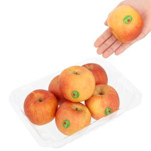 Táo Fuji nhập khẩu Nam Phi hộp 1kg (5 - 6 trái)