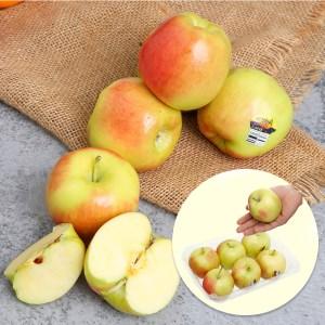 Táo Ambrosia nhập khẩu Mỹ hộp 1kg (6 - 7 trái)