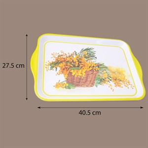 Khay nhựa úp ly A023 27.5x40.5 cm