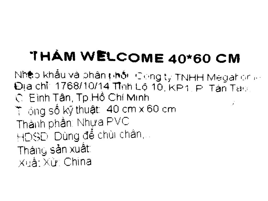 Thảm welcome nhựa Megahome 40x60cm (giao màu ngẫu nhiên) 6
