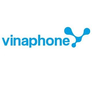 SIM số, thẻ cào Thẻ cào VinaPhone