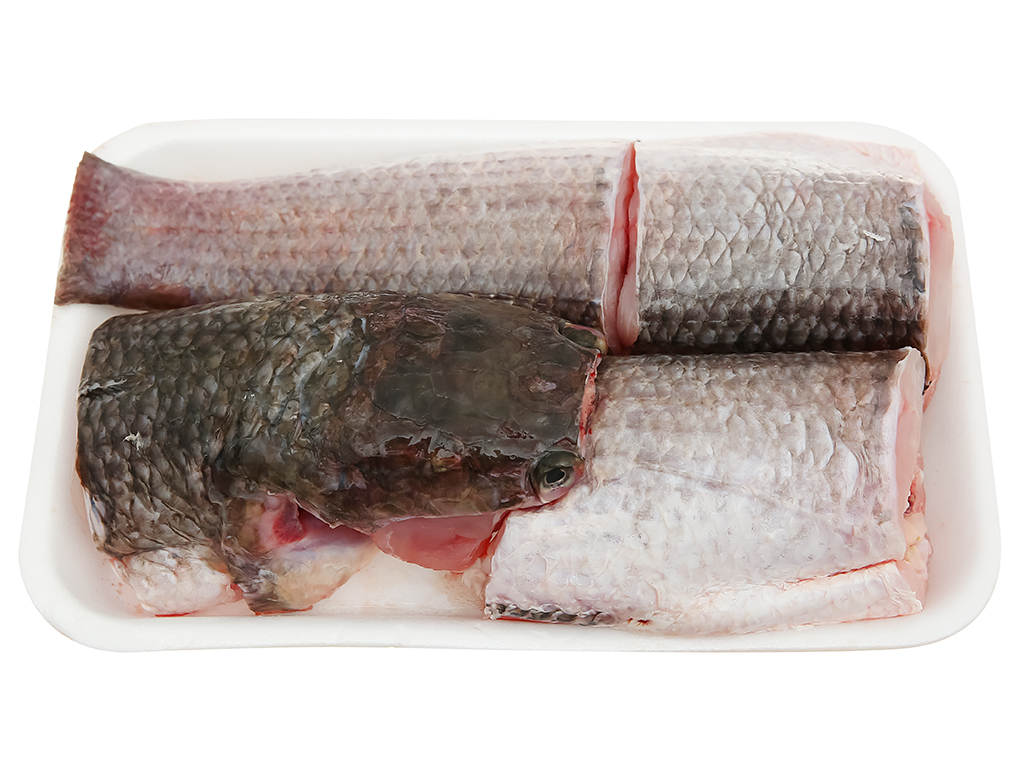 Cá lóc sống khay 500g 1