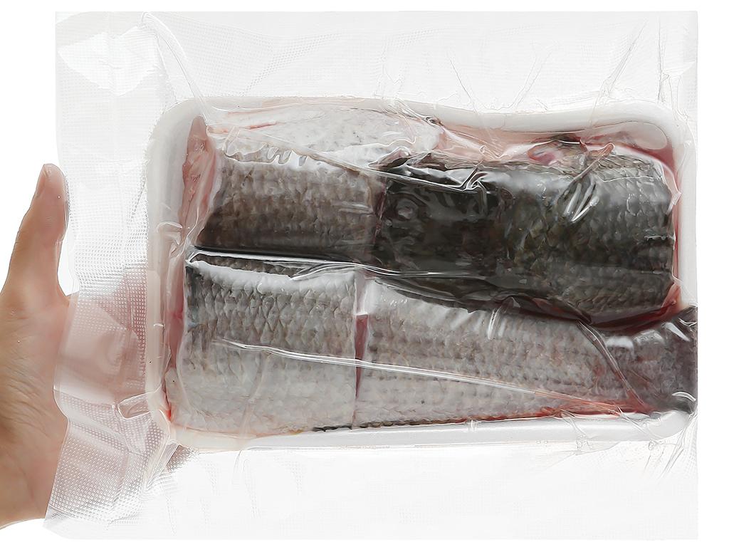 Cá lóc sống khay 500g 5