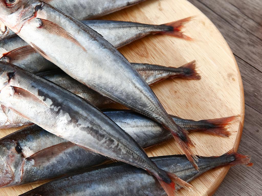Cá nục đông lạnh túi 1kg 4