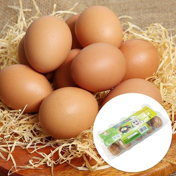 Hộp 10 trứng gà tươi QLEgg
