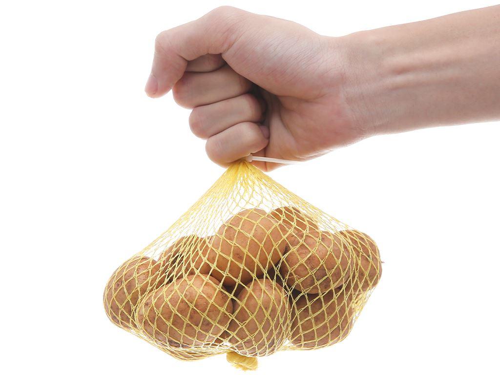 Khoai tây bi túi lưới 500g 5