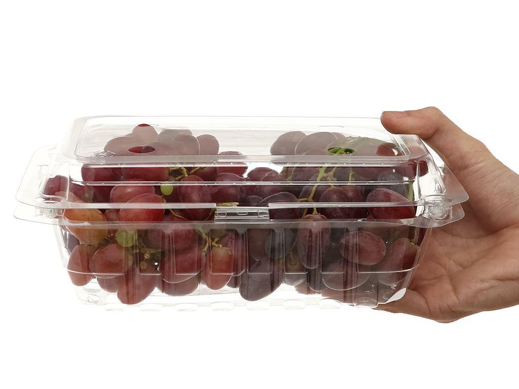 Nho đỏ không hạt hộp 1kg 5