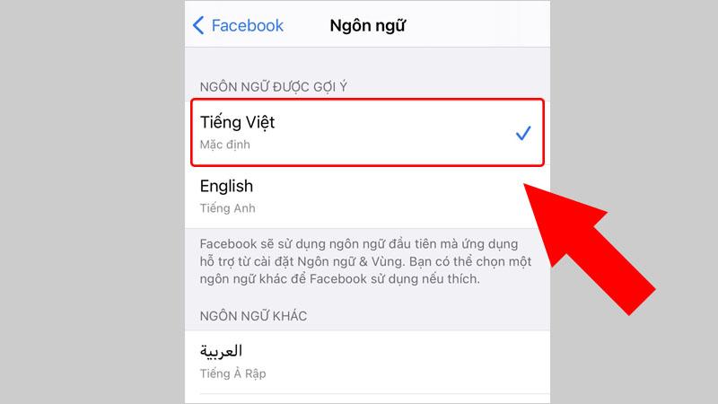 Cài đặt ngôn ngữ Tiếng Việt