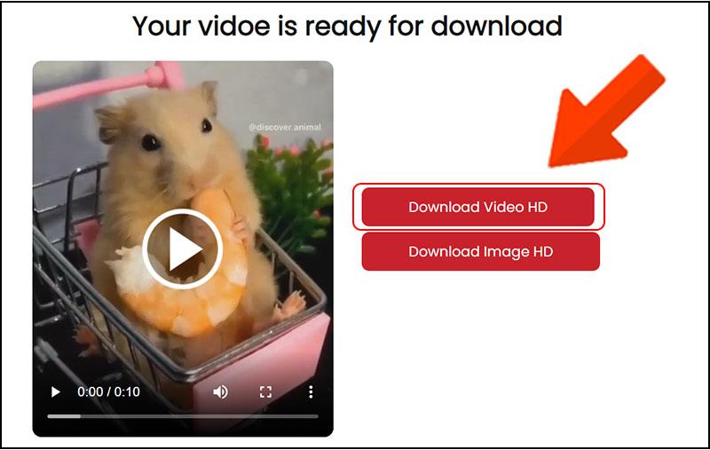 Chọn Download Video HD ở dòng đầu tiên.