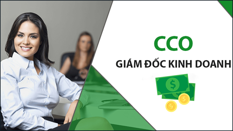 COO or Sales Director is an important position with the profit of the business