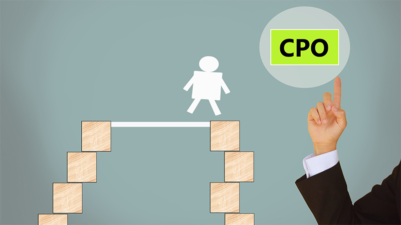 The CPO is responsible for all the production of a business's service or product