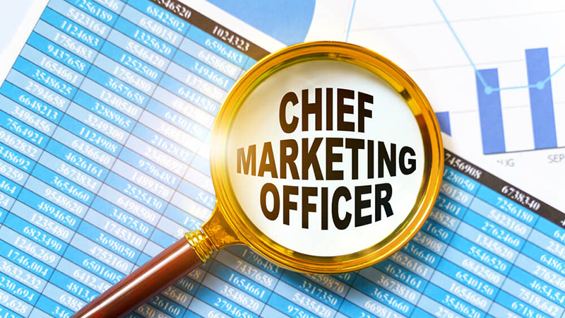 The CMO is responsible for product development and customer acquisition through various marketing channels