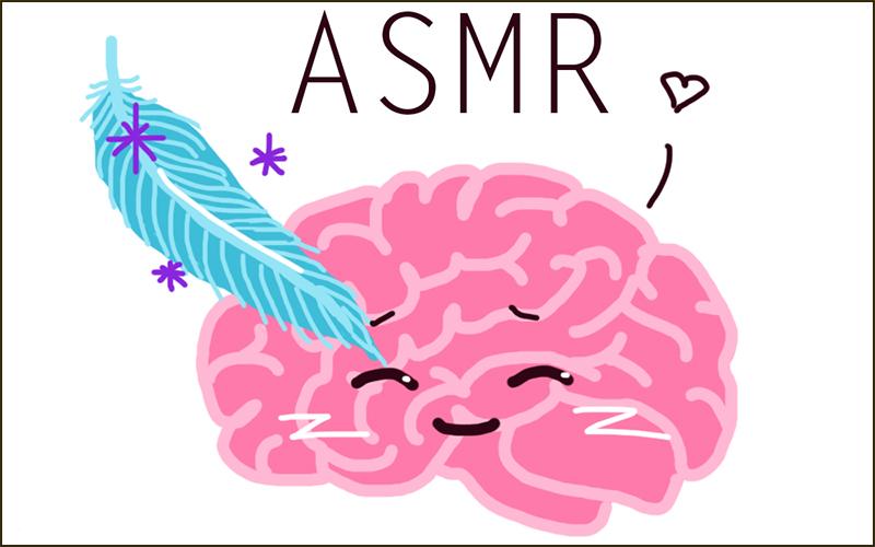 Hiện nay vẫn chưa giải thích được rõ ràng các lý do vì sao các âm thanh ASMR lại có thể tạo nên các cảm giác cực khoái đó cho cơ thể người nghe.