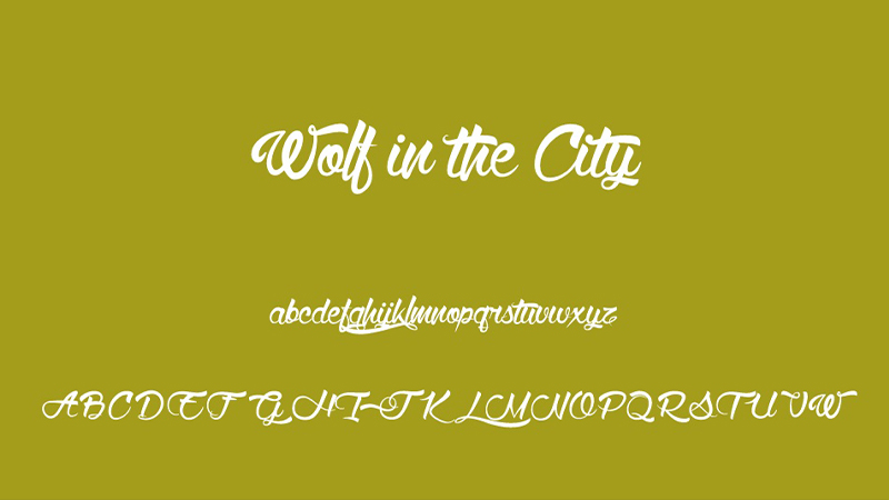 Font Wolf in the City