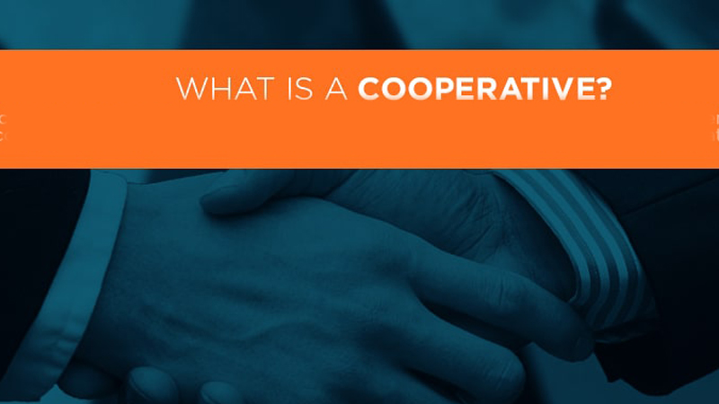 Hình minh họa khái niệm Co-operative