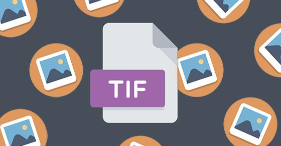 Định dạng ảnh TIFF là gì? Cách chuyển đổi file TIFF sang PDF, JPG, PNG