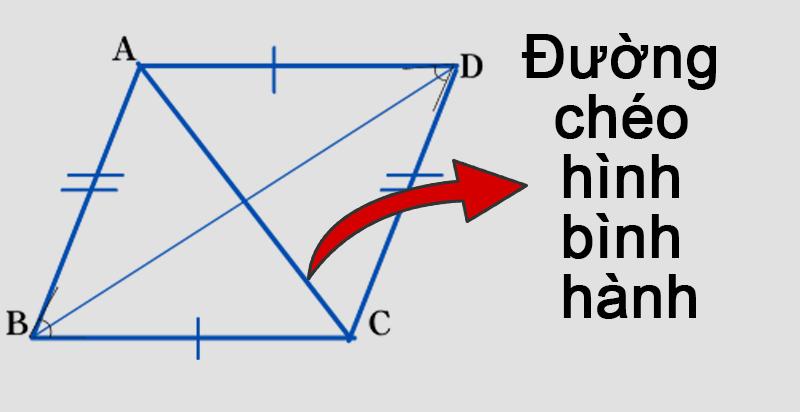 Đường chéo trong hình bình hành