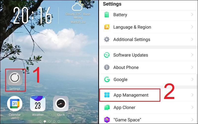 Chọn mục App Management trong ứng dụng Settings