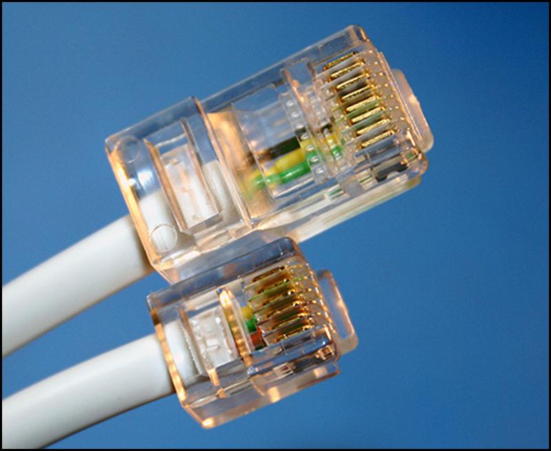 Sự kết hợp giữa hạt mạng và dây mạng